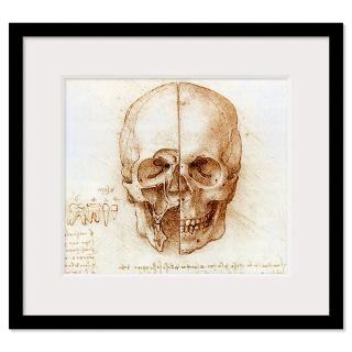 Skull anatomy by Leonardo da Vinci Framed Print