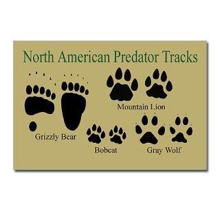 Predator Tracks Postcards (Package of 8) > Beartrackers Animal Tracks