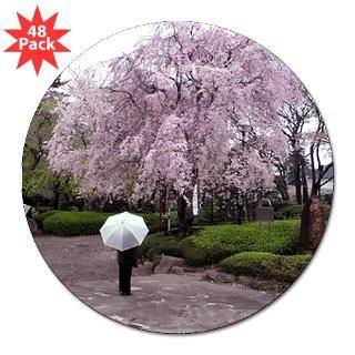 116 39 cherry blossoms umbrella bumper sticker 10 pk $ 32 39 cherry