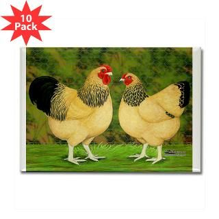 Wyandotte Rooster and Hen : Diane Jacky On Line Catalog