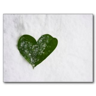 Natures Winter Snow Romantic Heart of Love Postcard