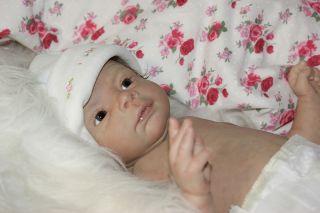 Josephine by Brit Klinger Reborn Baby Girl