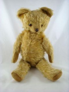 Jointed Glass Eyes Molded Nose Teddy Bear Knickerbocker Steiff