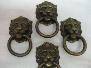 Vintage Brass Lion Drawer Pulls Lot of Four