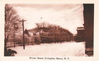1920 Livingston Manor NY Winter Scene Postcard