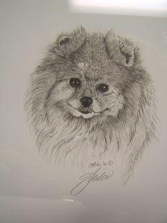 Pomeranian Dog Pencil Sketch Artwork Framed Signed