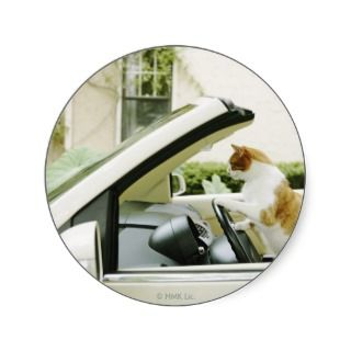 Cat Driving Convertible Photo Poster Print Round Sticker