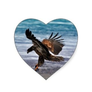 Golden Eagle Landing Kalifornsky Beach Alaska Stickers