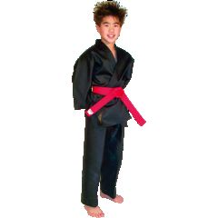 Traditional Karate Martial Arts Uniform Gi Blue Black White or Red