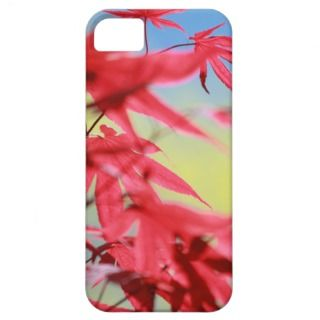 Pretty Red Japanese Maple Leaves Photo iPhone 5 Cases
