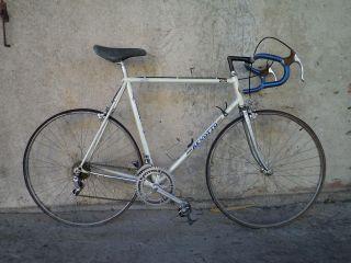 Vintage Benotto Engraved Road Bicycle Columbus Zeta Tubes Gipiemme