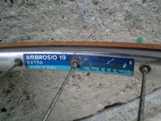 Vintage Dancelli America Road Bicycle Ofmega Ambrosio Modolo Size 51cm