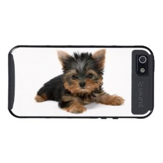 Yorkshire Terrier, yorkie puppy dog cute photo Case For iPhone 5
