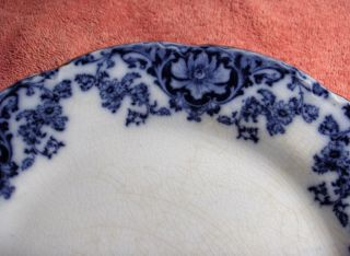 Antique England Flow Blue China Plate Flowers Scrolls Unmarked