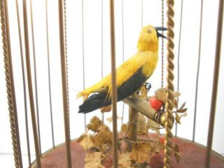 Vintage KG German Singing Bird Cage Antique Brass Automaton Music Box