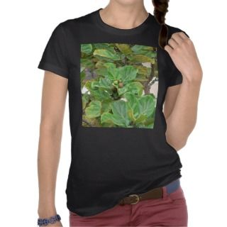 Fig Tree Tee Shirts