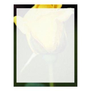 Long Stem Rose Letterhead, Custom Long Stem Rose Letterhead Templates