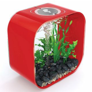 biOrb Life 30 Designer 8 Gallon Red Aquarium   Fish   Boutique
