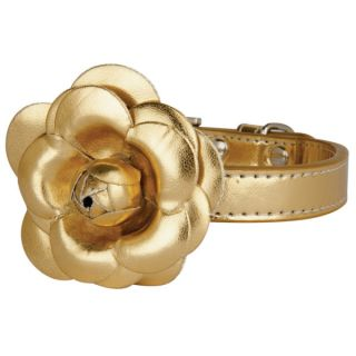 The Flower Dog Collar by LazyBonezz   Gold