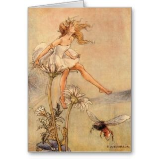 Fairy on a Daisy   Postcard