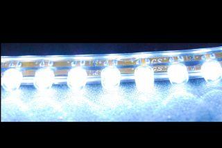 Tagfahrlicht TFL 48 LED Renault Megane Scenic Laguna