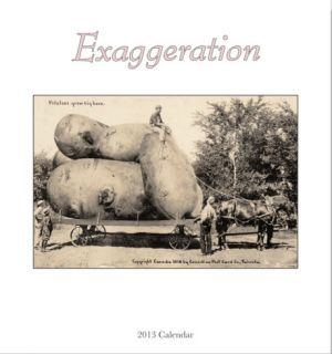 Exaggeration   2013 Easel/Desk Calendar Calendars