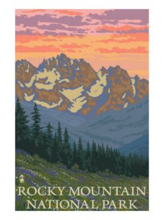 Rocky Mountain National Park, Co   Spring Flowers, c.2009 Poster by Lantern Press