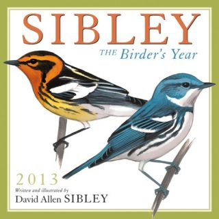 Sibley The Birders Year   2013 12 Month Calendar Calendars