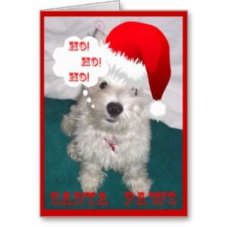 Ordinaire Pet Funny Christmas Quotes. QuotesGram