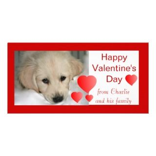 Happy Valentines Day Dog Photo Cards