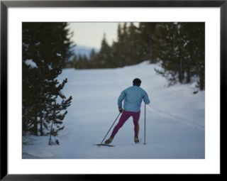 A cross country skier on a ski trail in Yellowstone National Park Prints by Raymond Gehman
