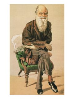 Men of the Day, no. 33, Charles Darwin, Cartoon from Vanity Fair Giclee Print