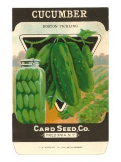 Cucumber Seed Packet Photo