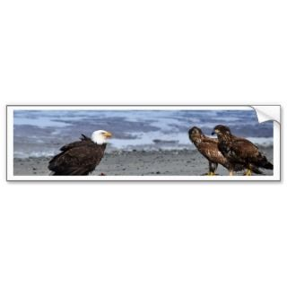 Dont Think So Bald Eagle And Golden Eagles Bumper Sticker