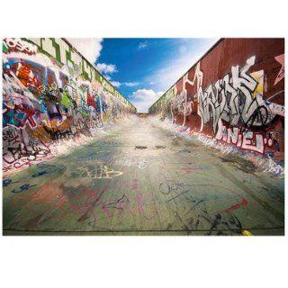 Fototapete   Papier No.145 GRAFFITI HALF PIPE 400x280cm Skater