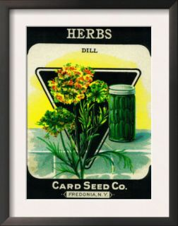 Herbs Seed Packet Posters