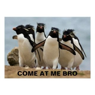 COME AT ME BRO PENGUINS PRINT
