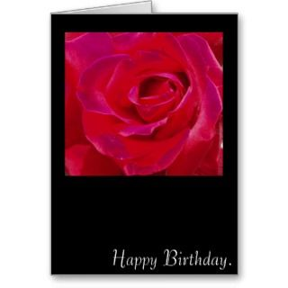 Rose Happy Birthday Card.