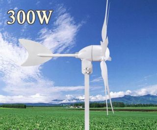 Windgenerator 300W DC 12V Weiß Wind Turbine Generator 6 Blades
