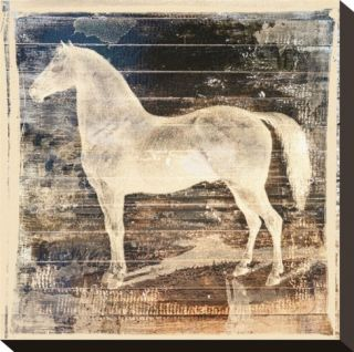 White Horse Stretched Canvas Print by Irena Orlov