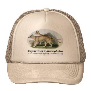 Thylacinus cynocephalus (Tasmanian tiger or wolf) Mesh Hat
