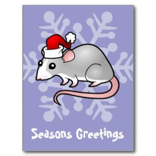Christmas Rat (silver blaze) postcards by SugarVsSpice
