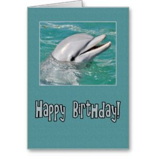 Cute dolphin happy birthday greeting cards