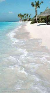 Tropical Beaches 2011 Pocket Planner (Calendar)