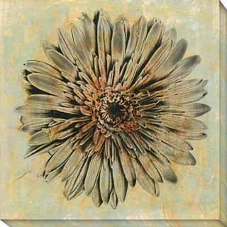 Evoke III Canvas Art Today $106.99 3.0 (1 reviews)