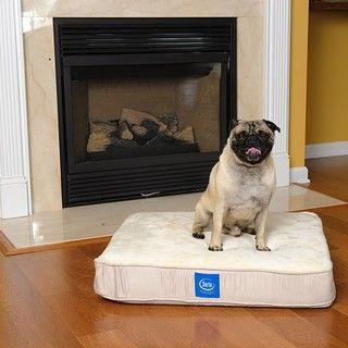 Serta True Response Memory Foam Pet Bed Small