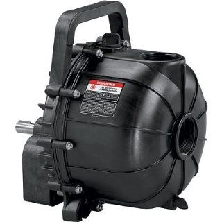 Pacer Water Pump   10, 200 GPH, 2in., Model# SE2FLPE