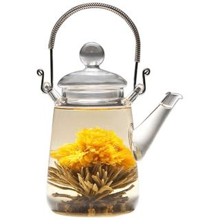Tea Beyond Glass 16 Ounce Non Dripping Hand Crafted Teapot Duo
