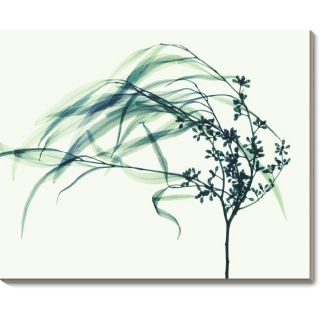 Steven N. Meyers Wind Canvas Art
