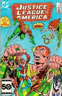 Justice League of America #243 Gerry Conway Books